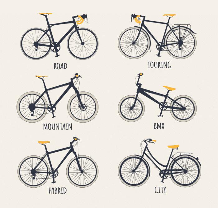 Trail Mountain Bike Frames